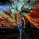 Die Farben des Windes von Evita