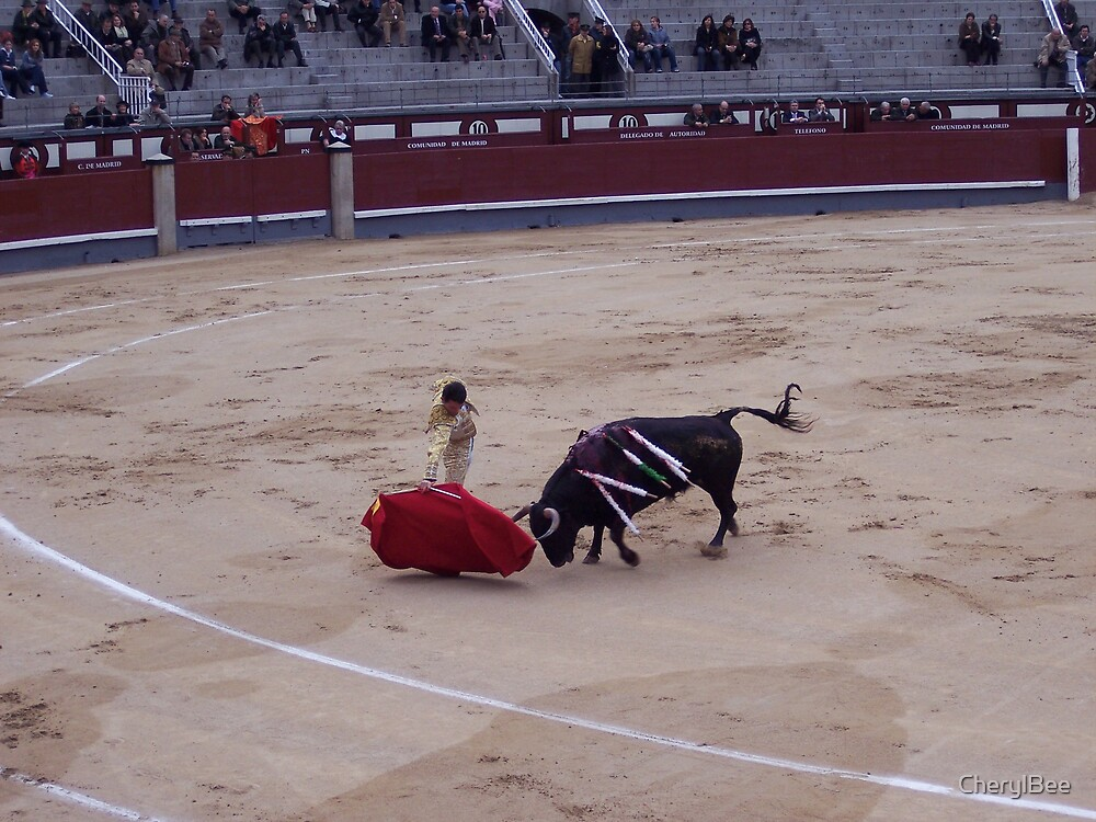 Bull Fight in Madrid by CherylBee