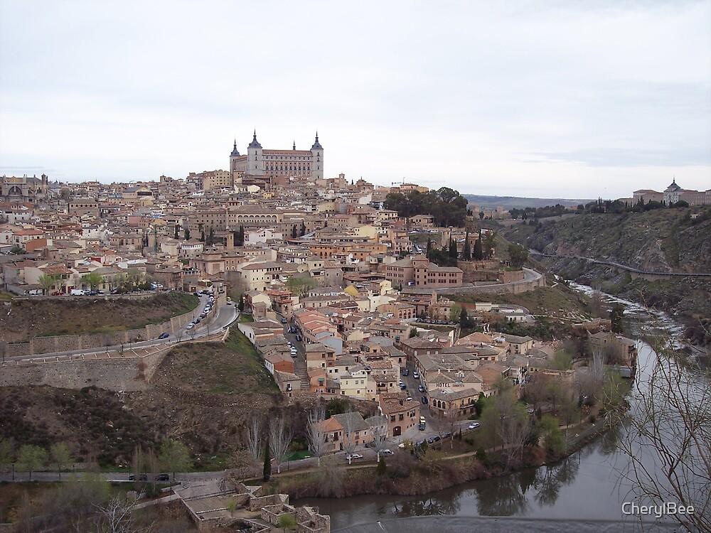 Hilltop of Toledo, Spain by CherylBee