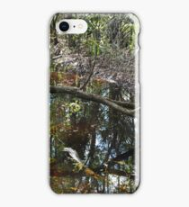Hidden History iPhone Case/Skin