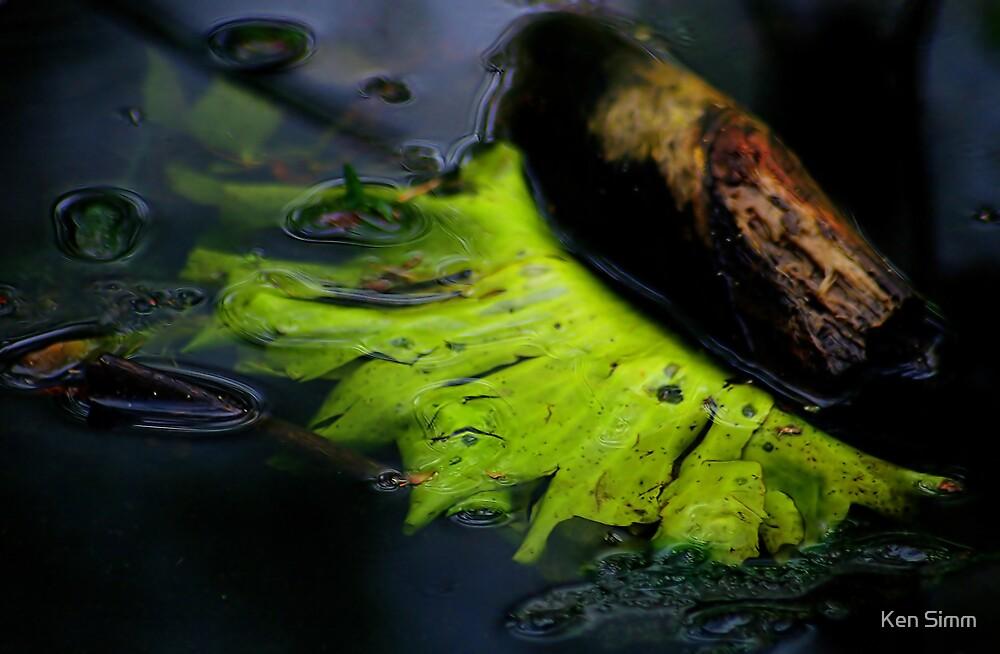 Stream Detail 1 The Leaf by Kenart