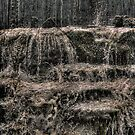 Cascade by Dave Warren