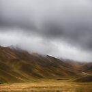 Lindis Pass New Zealand by Linda Cutche