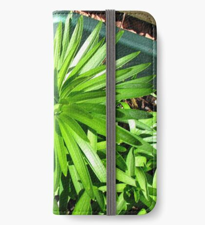Green and Gorgeous - Sunlit Lily Leaves iPhone Flip-Case