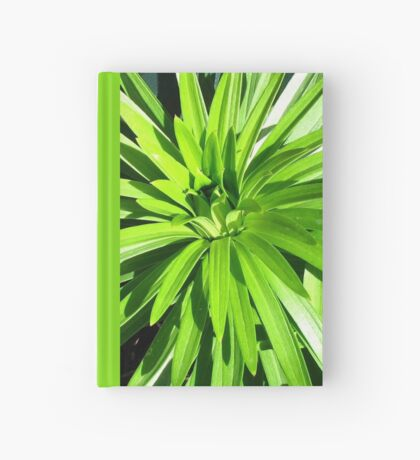 Green and Gorgeous - Sunlit Lily Leaves Notizbuch