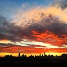 Melbourne Skyline at sunset by Roz McQuillan