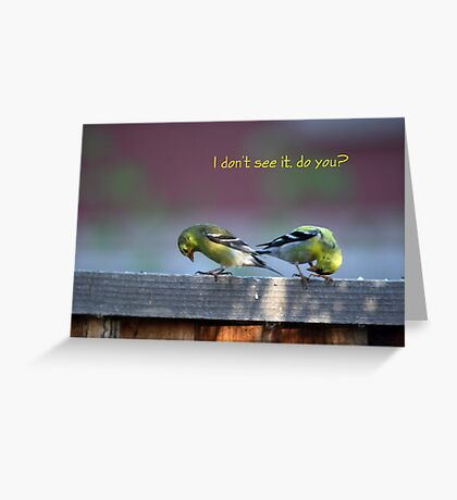 Goldfinch Bow Greeting Card
