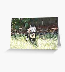 Terrier on the Run! Greeting Card