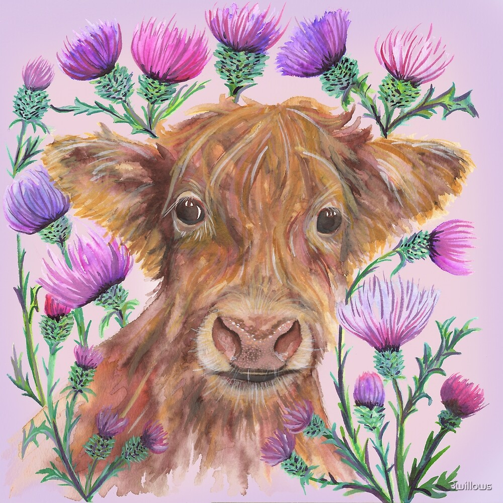 Highland Cow by 3willows