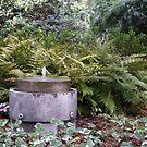 Garden Fountain by Rebekah  McLeod