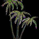 Rainbow Palm Trees by Linda Callaghan