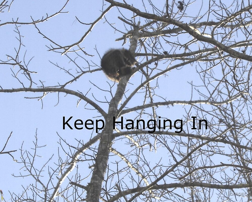 Keep Hanging In by librapat