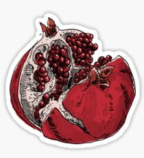 pomegranate drawing Sticker