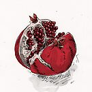 pomegranate drawing by Richard Morden