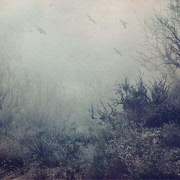 Blue Woods  by EmiBlackBox