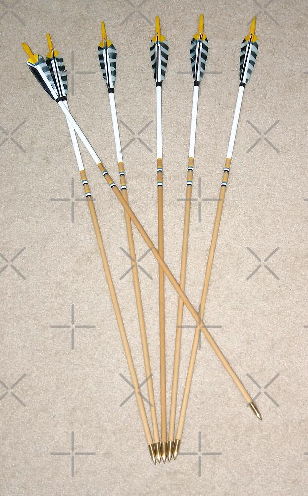 Custom Arrows by Sandra Chung