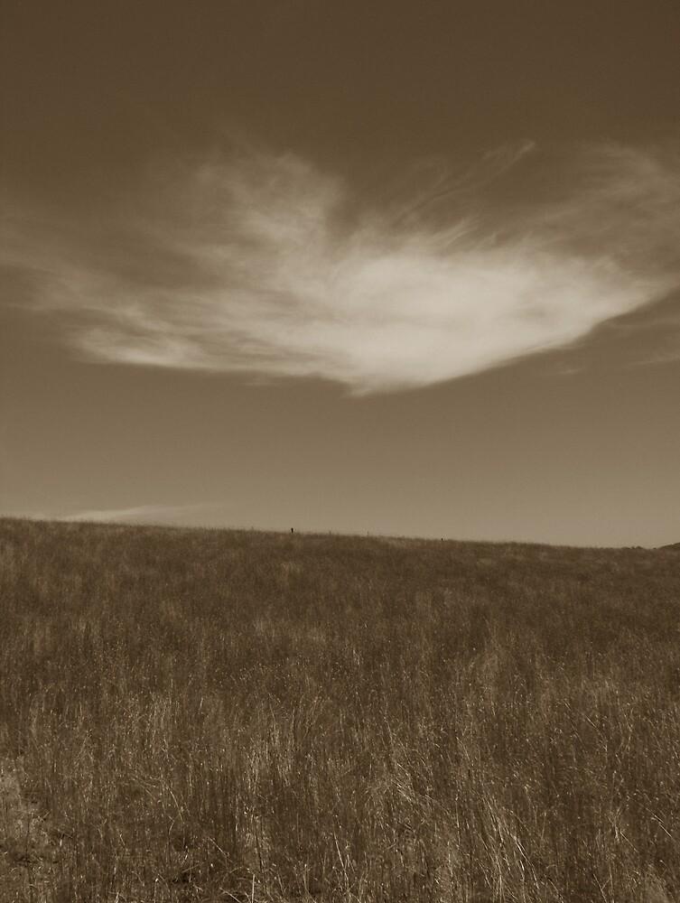 A timeless landscape by ransam