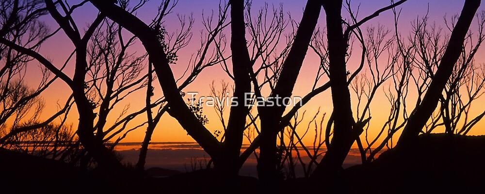 Windy Saddle Sunset by Travis Easton