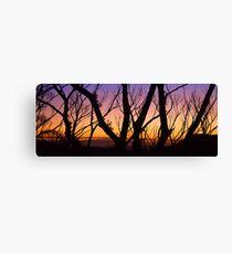 Windy Saddle Sunset Canvas Print