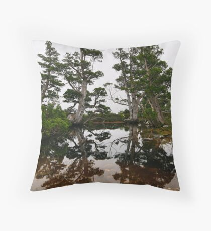 Artists Pool Throw Pillow