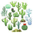 Watercolor Cactus von skrich