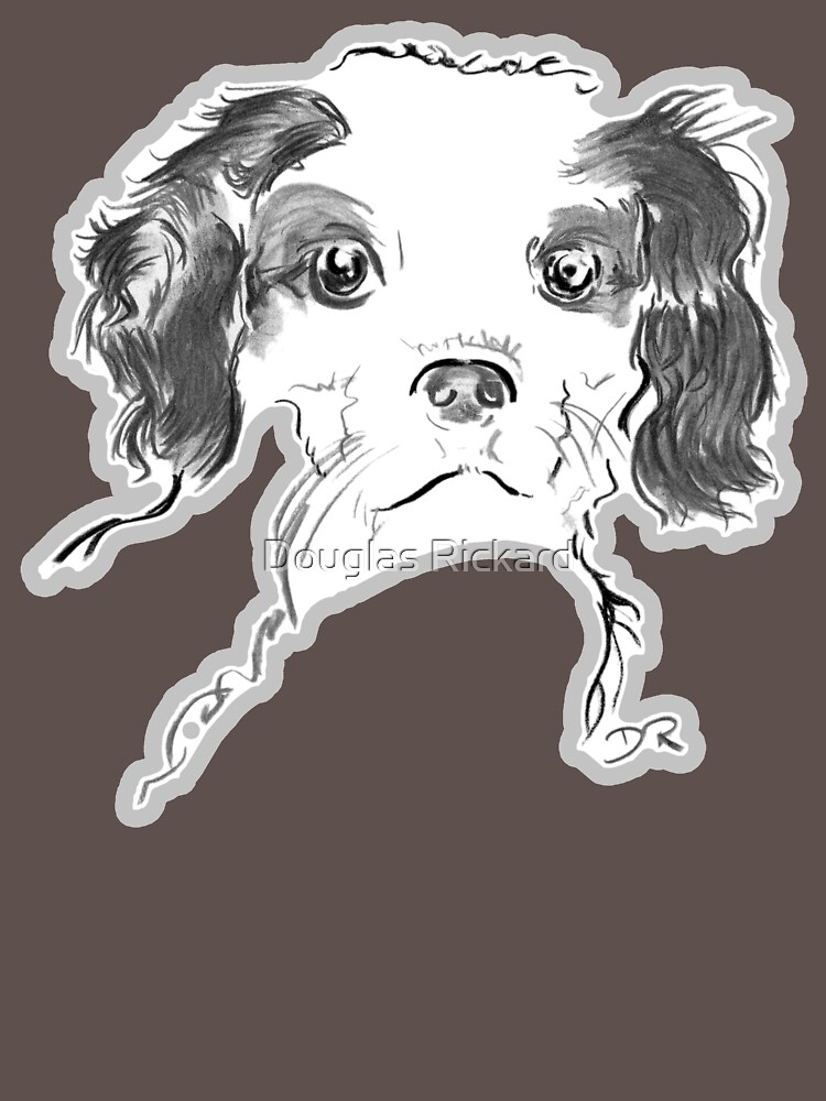 Cavalier King Charles Spaniel Puppy Drawing by douglasrickard