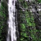 Waimoku Falls by Philip James Filia