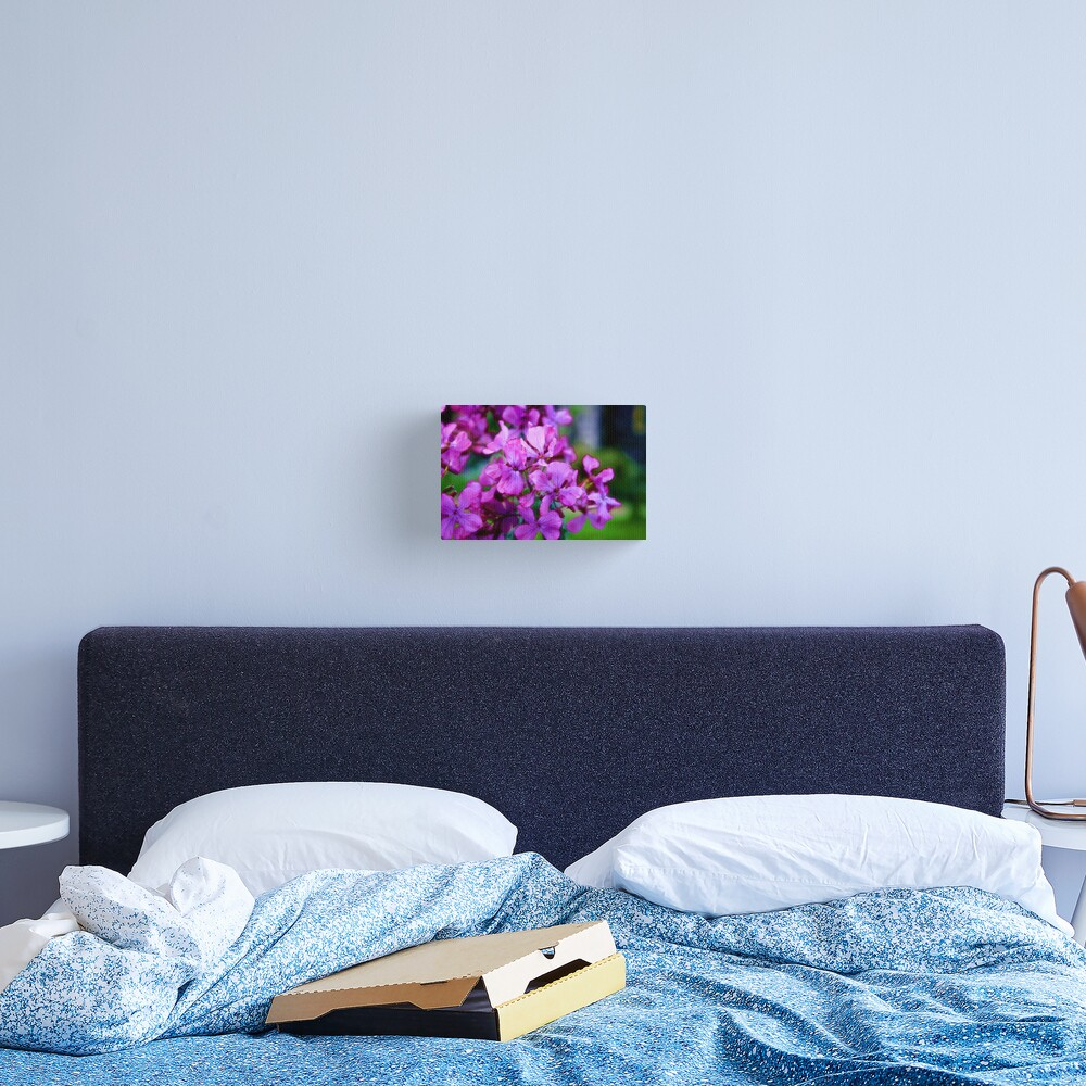 Flowers Outside St Giles IV Canvas Print