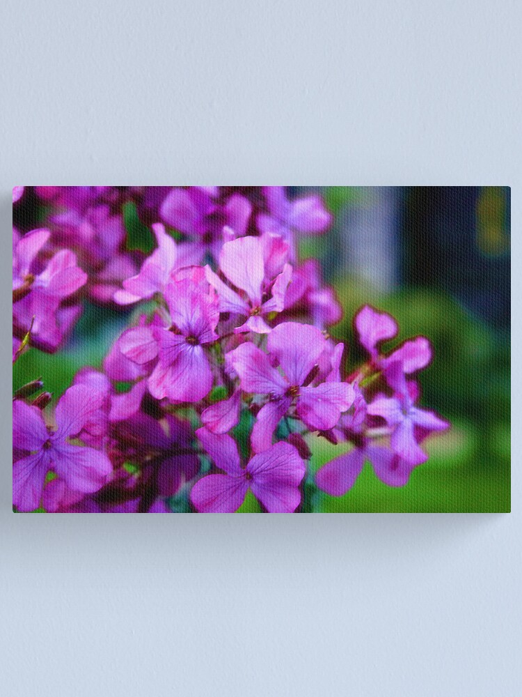 Alternate view of Flowers Outside St Giles IV Canvas Print