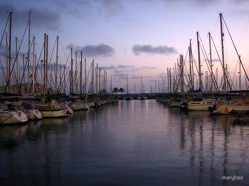 the marina at sunset by marybee