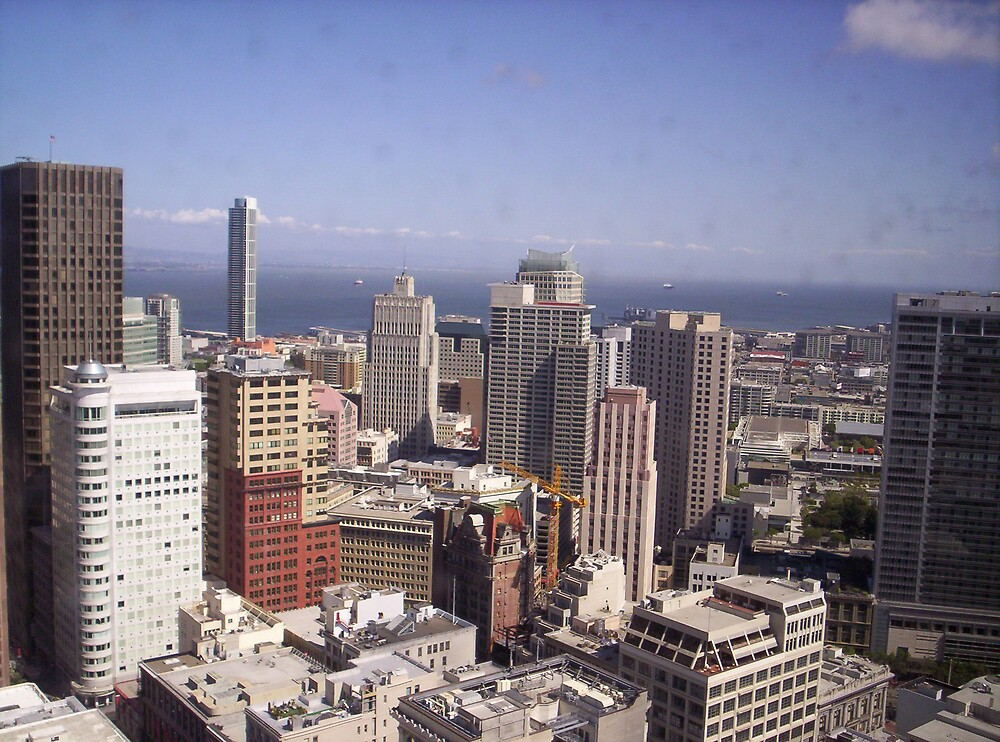 San Francisco and Bay by clou