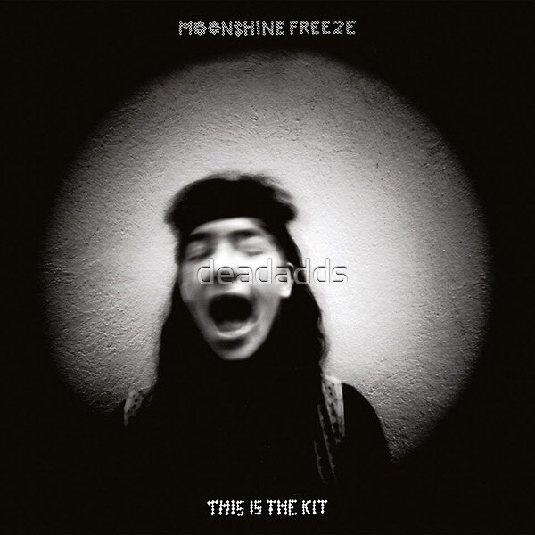This Is The Kit – Moonshine Freeze - LP vinyl artwork - Folk World Country music by deadadds