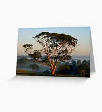 A Golden Moment - Nairne Greeting Card