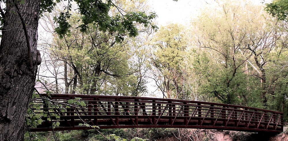 Walkway Bridge by Judi Taylor