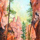 Bryce Canyon #2 by bettymmwong