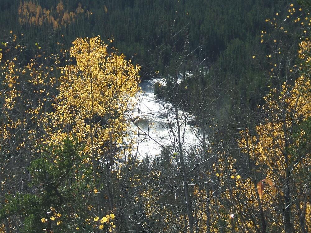 Silver Falls Provencial Park 1 by Clowpermou