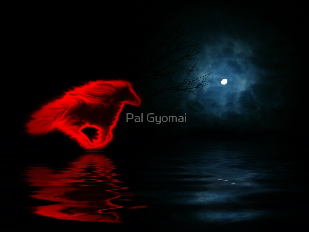 Fire In The Night by Pal Gyomai