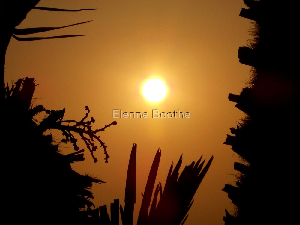 LET ME LIGHT YOUR WAY by Elenne Boothe