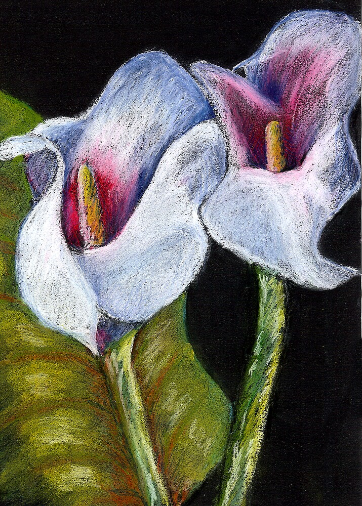 Lillies by Marilyn Brown