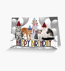 Birthday Cats - Card Greeting Card