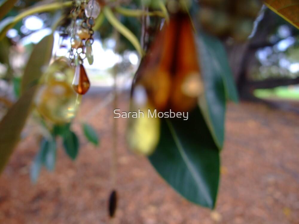 Midsummer's Morning by Sarah Mosbey