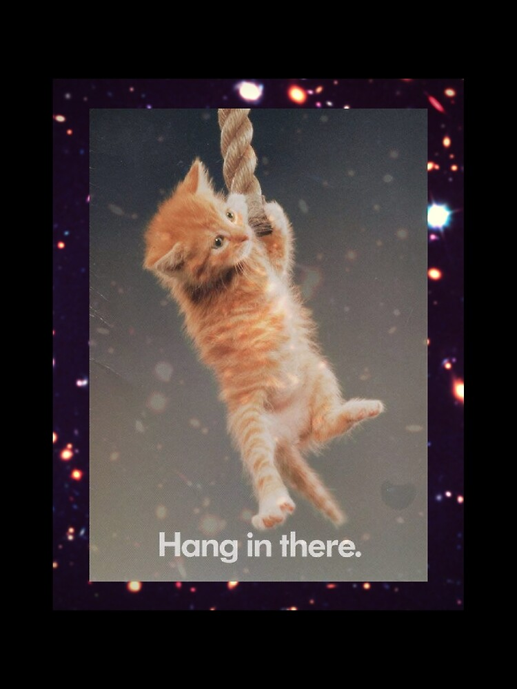 Hang In There, Space Kitty von koopkaty