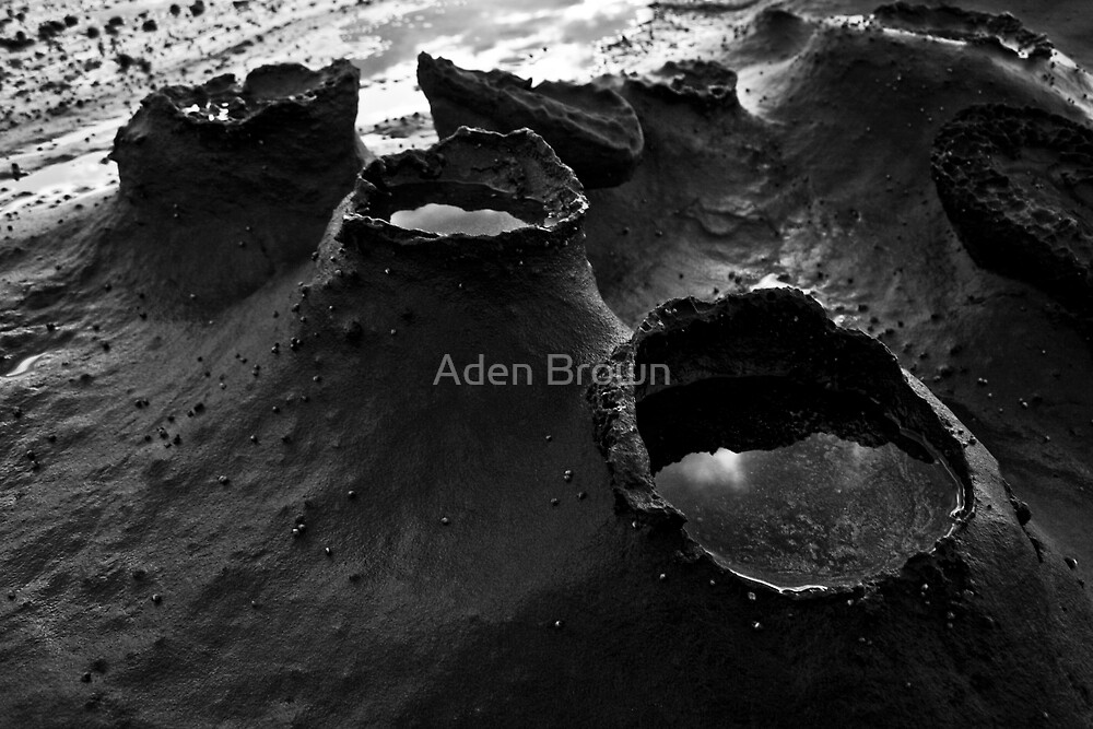 Rockpools at Blanket Bay by Aden Brown