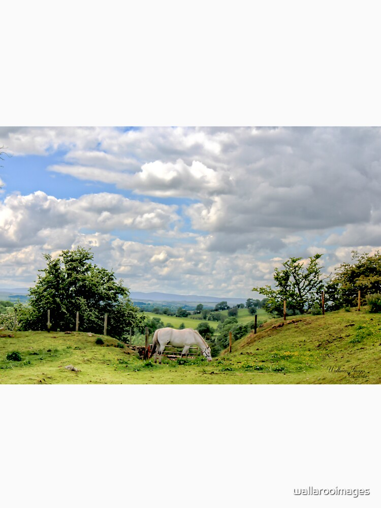 English Country Landscape 6 by wallarooimages
