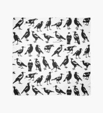 MAGPIES - Australian native birds (white and greys) Scarf
