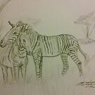 Zebras Cuddling by Stephanie Small