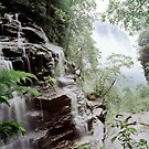 Valley Of The Waters Wentworth Falls by Brett Thompson
