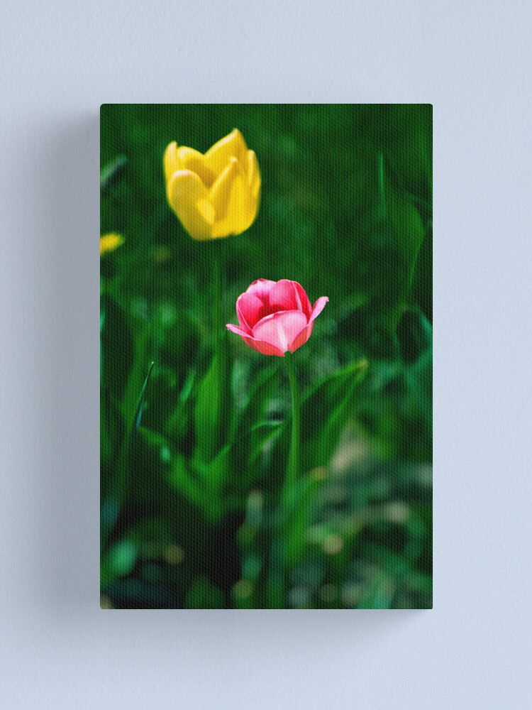 Alternate view of Two Tulips Canvas Print