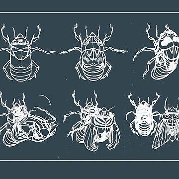 Cicada Metamorphosis by sarahcrawley