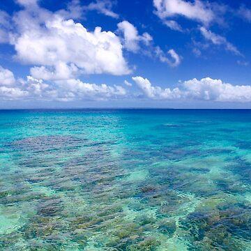 Ocean Reef Blue Sky by DennisNewsome